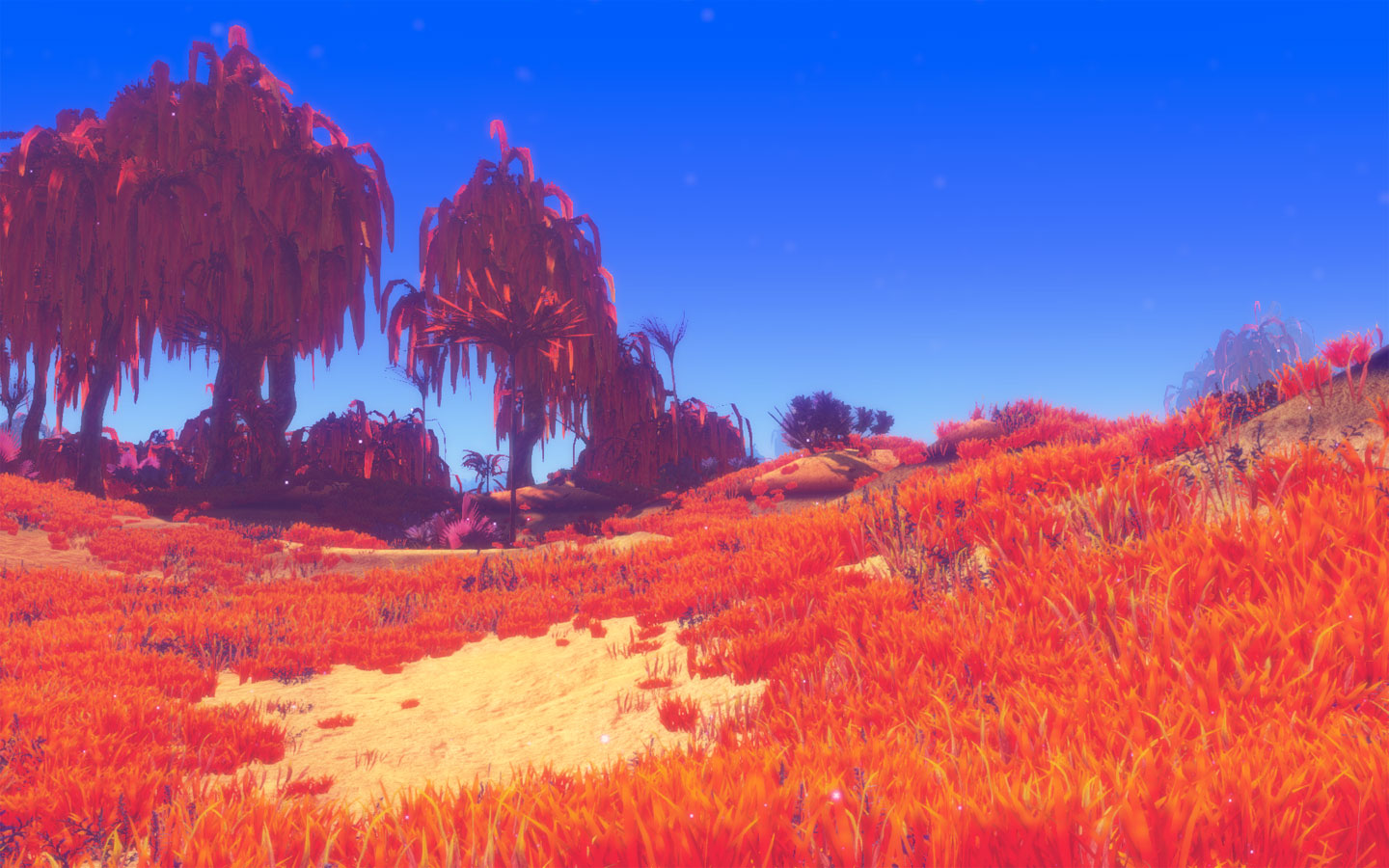 Sandy Voxel Terrain Engine - When Vision Meets Execution | Planet Nomads