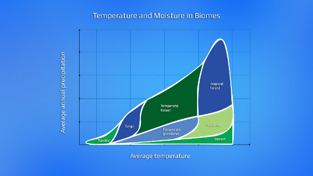 temperature biomes_resized